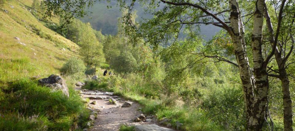 Steall Falls path
