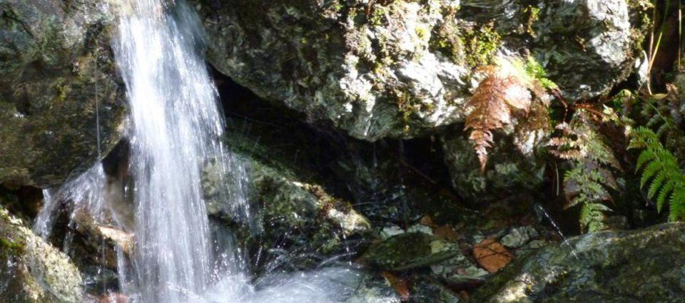 Natural springs