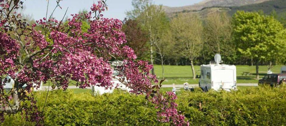 Lochy Holiday Park