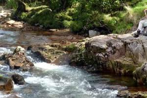 Lower Falls in Glen Nevis