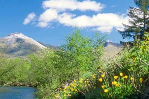 Glen Nevis in Springtime