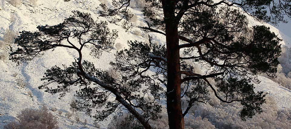 Beautiful Glen Nevis