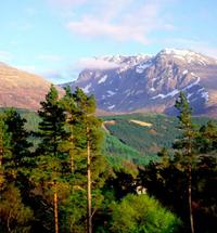 Ben Nevis from Cedar Lodge