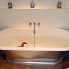 Thumbnail bath