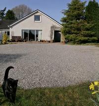 house_front_spring_1k.jpg