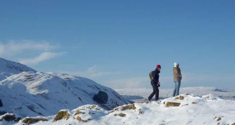 Winter walkers