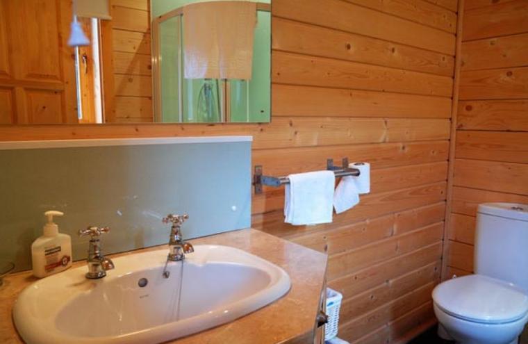 Medium large cabin interior03